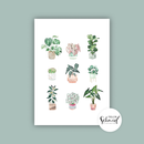 Postkarte A6 potted plants no.1 by Frollein Schmid
