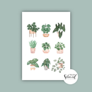 Postkarte A6 potted plants no.2 by Frollein Schmid
