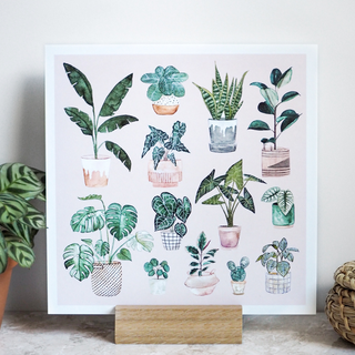 Poster 210x210mm potted plants by Frollein Schmid