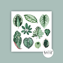 Postcard 148x148mm print leaves by Frollein Schmid